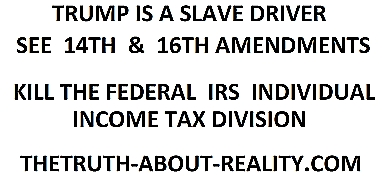 kill the ferdeal IRS individual income tax division